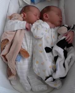 Twin babies cuddled up together